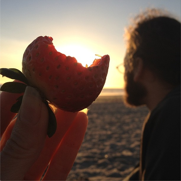 The Whole Ruth Strawberries by the Sea