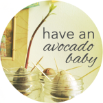 Button Avocado Baby
