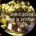 Button Avocados Are a Virtue