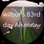 Button Wilbur 83 Bday