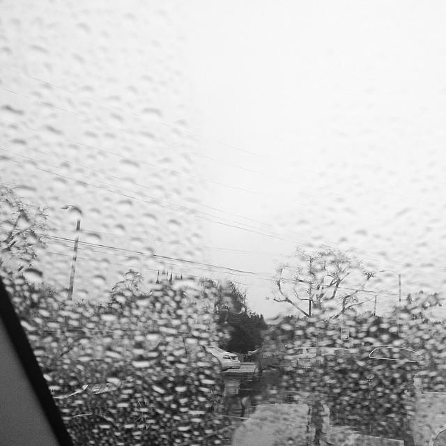 TheWholeRuth Rain AlmostLooksLikeSnow