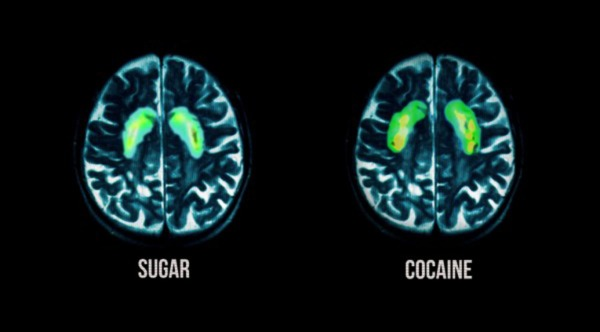 fed up sugar cocaine