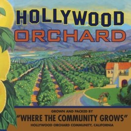 hollywood orchard square