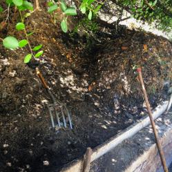 17.5 TheWholeRuth Compost Flip