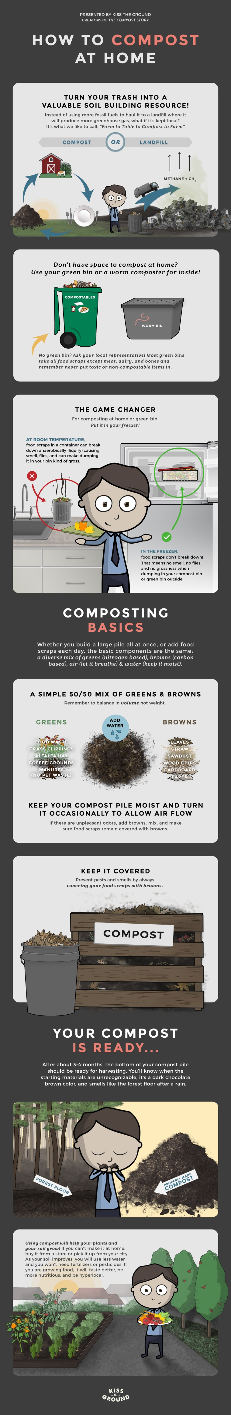 Compost Story infographic