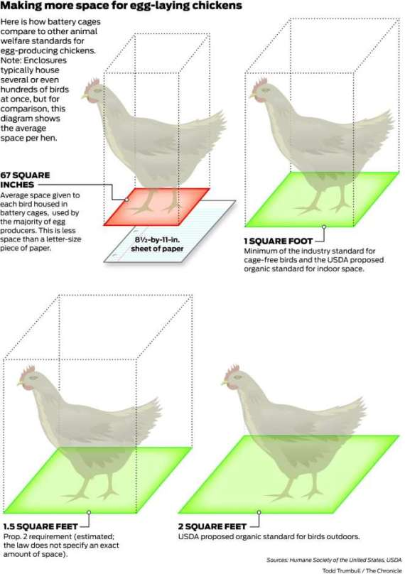 SF Chronicle 2016 egg-laying hen info from Humane Society