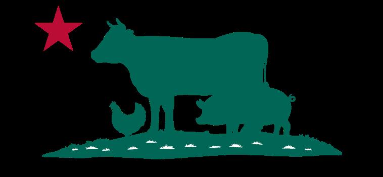 logo-y12